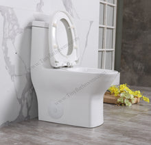 "Load image into Gallery viewer, CARUS - 23.5"" SMALLEST Toilet"
