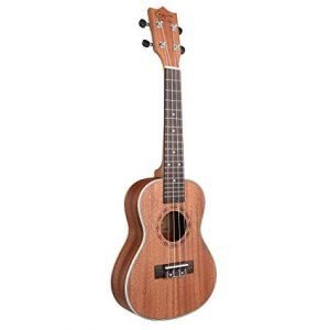 A tenor ukulele is a wonderful music instrument that allows you to enter the world of sound