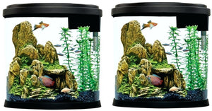 Perfect Concept Top Fin Fish Tank