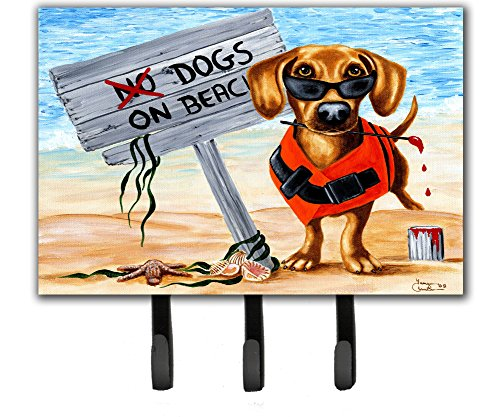 Caroline's Treasures AMB1341TH68 The Dog Beach Dachshund Leash or Key Holder, Large, Multicolor