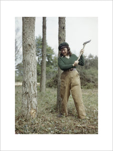 Jean Sheehan, a Land Army girl, chopping a tree.