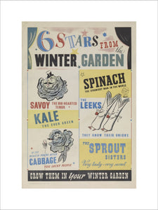 Six Stars From the Winter Garden - Grow Them in Your Winter Garden