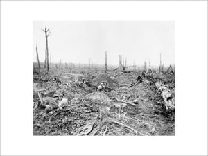 Battle of Bazentin Ridge, 14-17 July 1916. Soldiers digging a communication trench through Delville Wood.