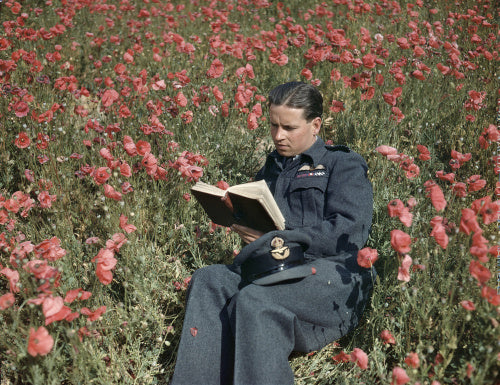 Wing Commander Guy Gibson VC, Commanding Officer of No. 617 Squadron (The Dambusters) at Scampton, 22 July 1943.