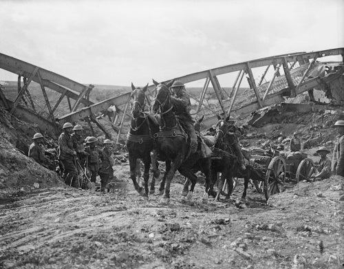 Horse team of the Royal Field Artillery pulling an 18 pounder field gun near Moeuvres, 27 September 1918.