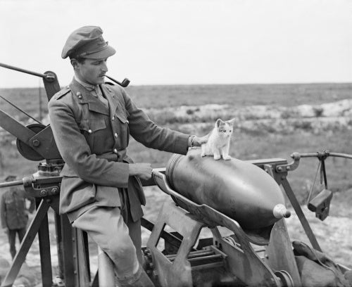 An officer of the 444th Siege Battery, Royal Garrison Artillery (RGA), smokes a pipe as he supervises a kitten balancing on a 12 inch gun shell near Arras, 19 July 1918.