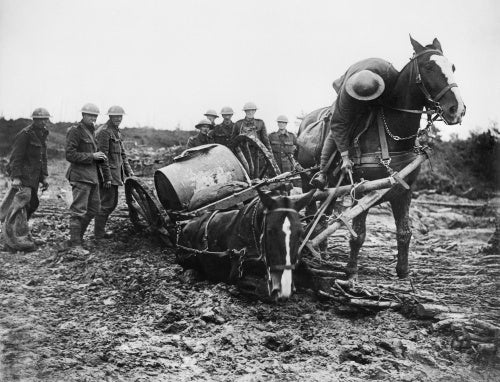 The Battle of Passchendaele, July-November 1917 - The Battle of Pickham Ridge