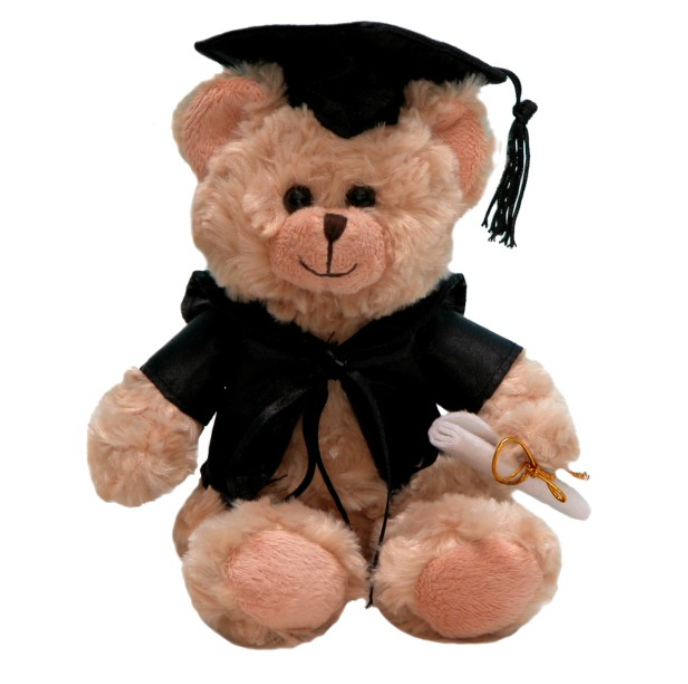 ADD ON: Graduation Teddy-Gift Boxes and sweet treats New Zealand wide-Celebration Box NZ
