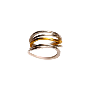 Class 5-Stack: 1 Gold Ring