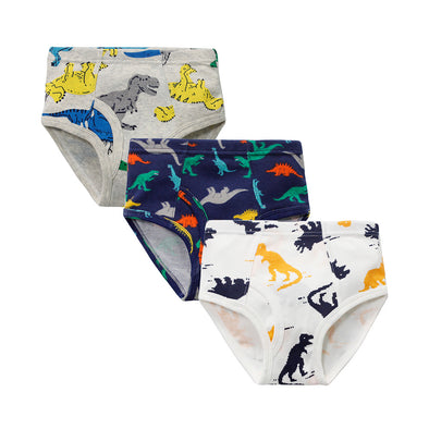 3 Pairs Assorted Underwear Set for Boys - Shelark