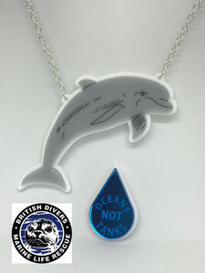 Dolphin Necklace & Statement Pin