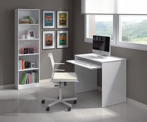 Fern Small White Gloss Desk