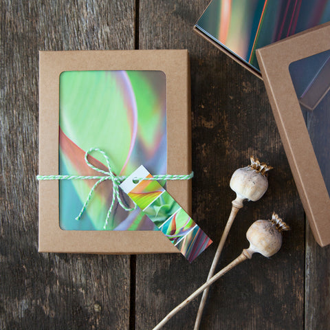 Greeting Cards Selection Pack - New Leaf