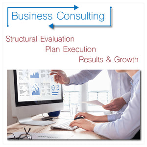 Business Consulting — Initial Consultation