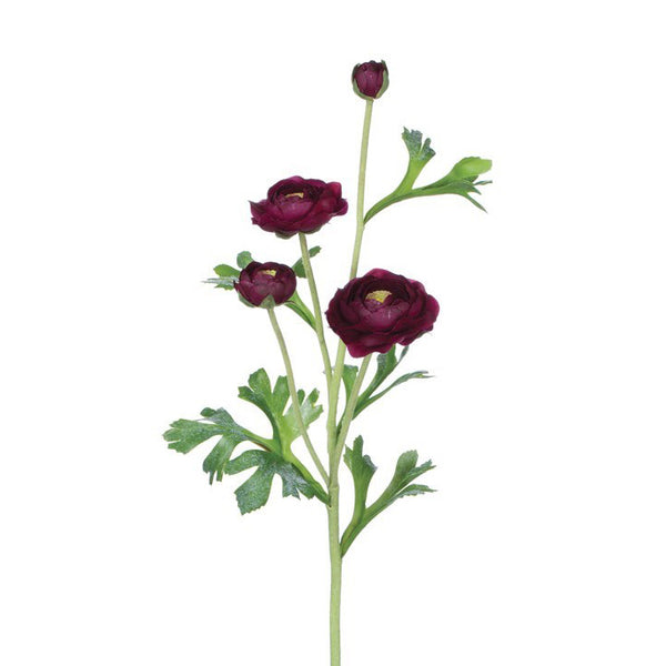 crown and birch ranunculus stem merlot detail
