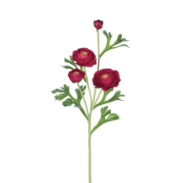 crown and birch ranunculus stem red detail