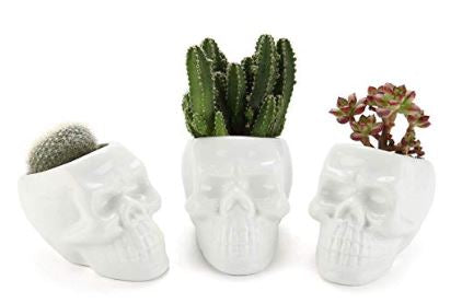 White Ceramic Skull Shaped Succulent Planter Pots Set of 3, Cute Cactus Plant Pot Creative Pen Pencil Holder for Home Office Desk Decoration Birthday Wedding Christmas Gift