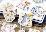 Cat lovers cute Stickers for DIY and scrapbooking - Shawlin