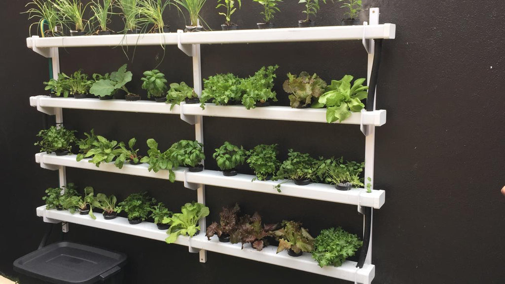 2M Hydroponic NFT Wall-Mounting System