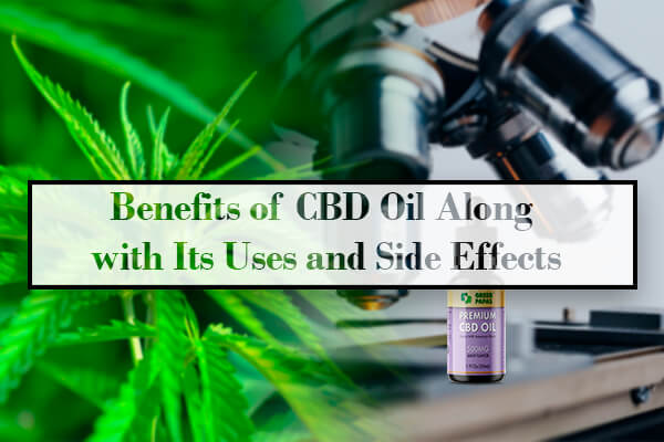 Benefits of CBD Oil Along with Its Uses and Side Effects