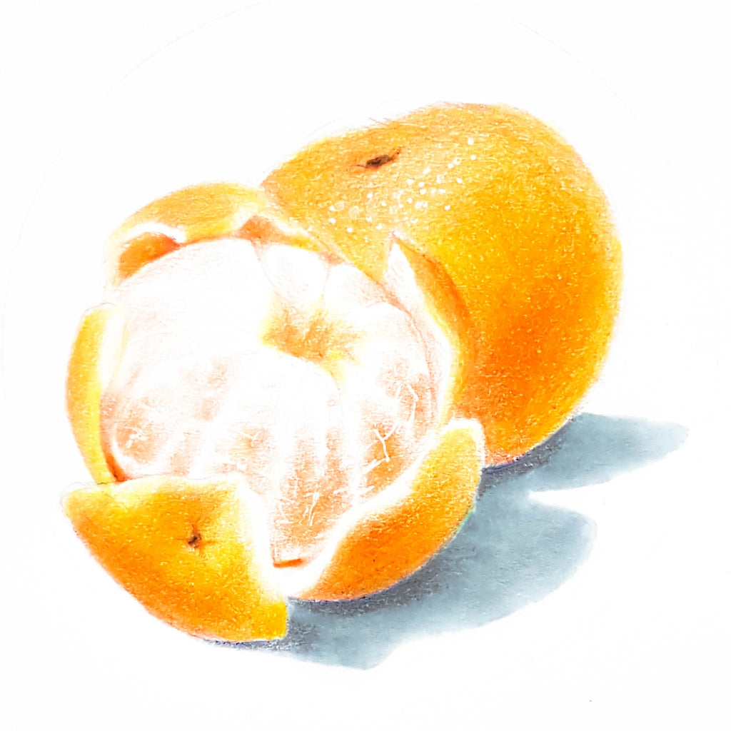 Drawing of partially peeled clementines by Brianna Tosswill