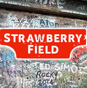STRAWBERRY FIELD FOREVER - VIDEO