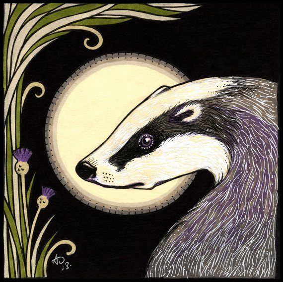 Moon Badger, Modern Counted Cross Stitch Kit -Anita Inverarity