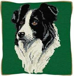 Border Collie CROSS Stitch Tapestry Kit, Brigantia Needlework C1840