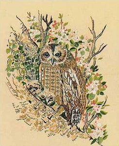 Embroidery Kit Tawny Owls, Design Perfection E202