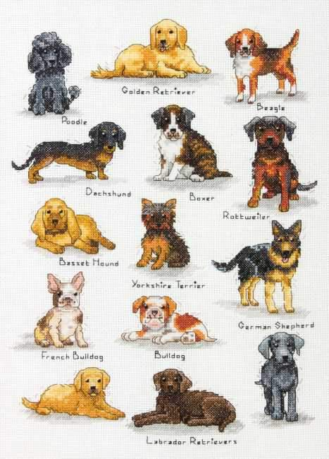 Dog Sampler Cross Stitch Kit,  Dimensions D70-35353