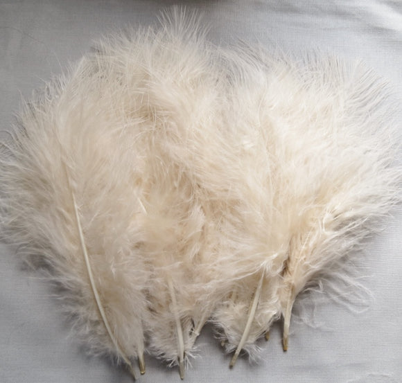 Marabou Feathers, Luxury Marabout Feathers - Premium Champagne x 12