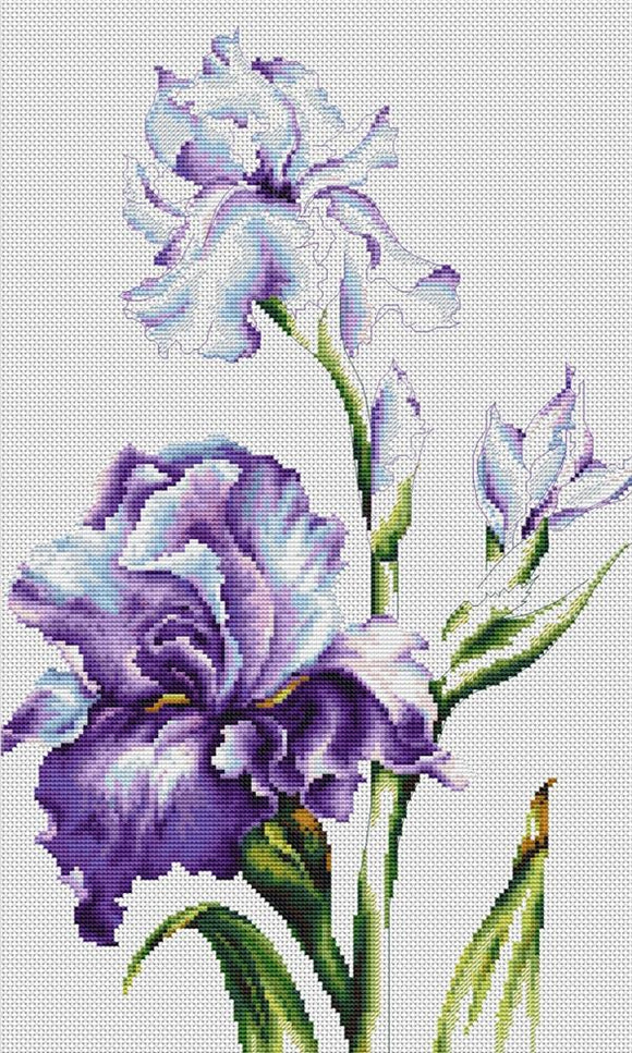 Purple Iris Cross Stitch Kit Luca-s B2251