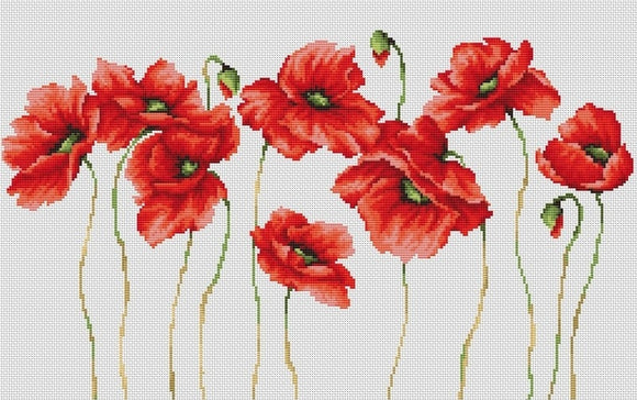 Cross Stitch Kit Eleven Poppies, Counted Cross Stitch Kit Luca-s B2223