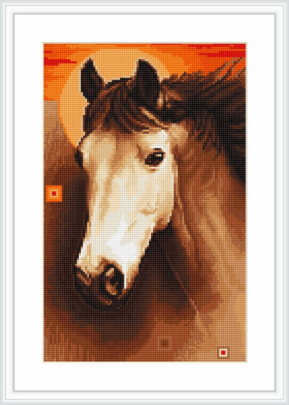 Petit Point Kit Horse, COUNTED Half Cross Stitch Kit Luca-s G509