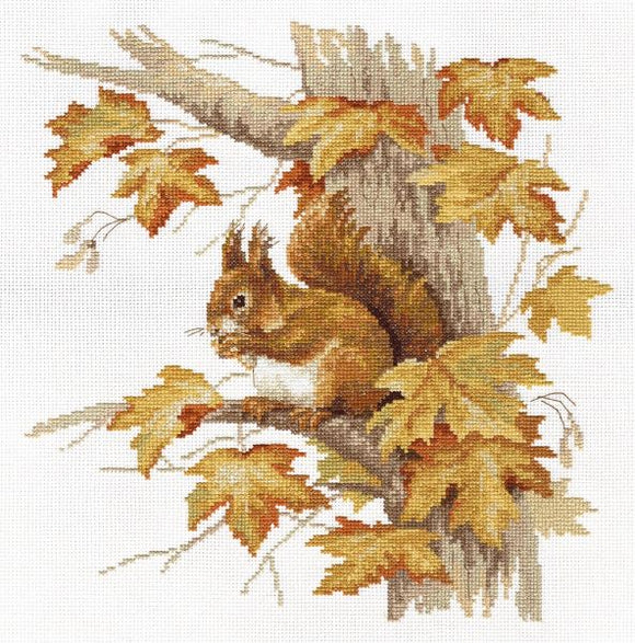 Red Squirrel Cross Stitch Kit, Panna J-1472
