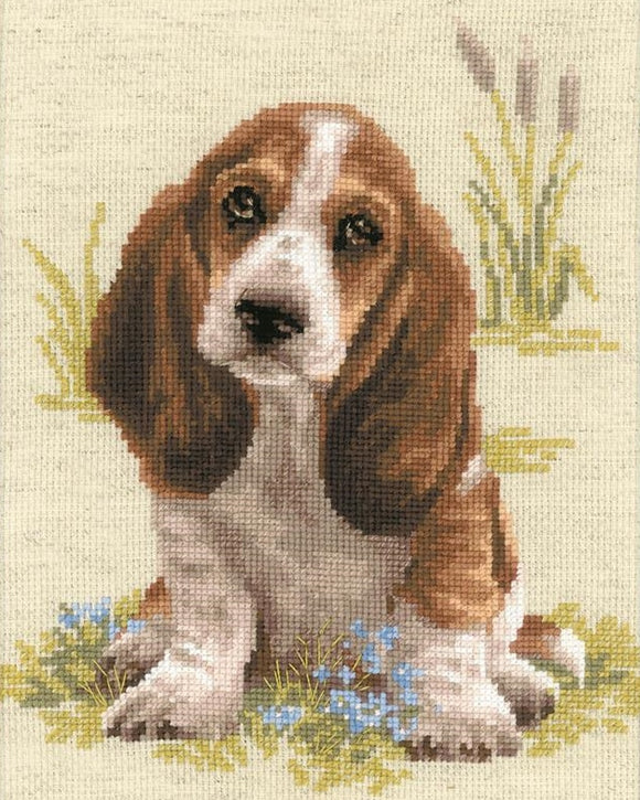 Cross Stitch Kit Basset Hound, Counted Cross Stitch Kit Riolis R1578