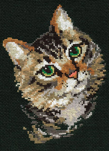 Colourful Tabby Cat, Counted Cross Stitch Kit Riolis R766