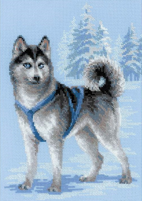 Cross Stitch Kit Husky, Counted Cross Stitch Kit Riolis R1626