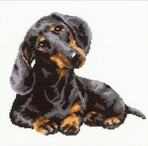 Dachshund Cross Stitch Kit, Riolis R906