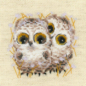 Cross Stitch Kit Owls, Counted Cross Stitch Riolis R1755