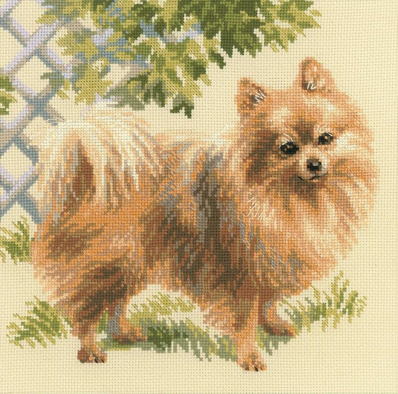 Cross Stitch Kit Pomeranian, Counted Cross Stitch Kit Riolis R1585