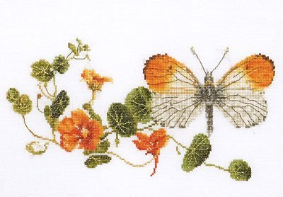Orange Tip Butterfly, Counted Cross Stitch Kit Thea Gouverneur