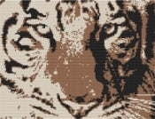 Tiger Stare Cross Stitch Kit - Elements Tiger Cross Stitch FS