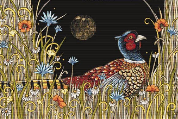 Midnight Meadow, Modern Counted Cross Stitch Kit -Anita Inverarity