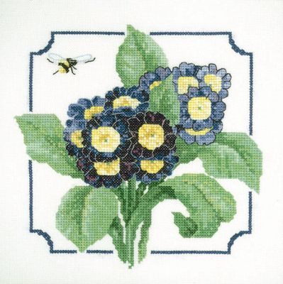 Auricula Cross Stitch Kit, Heritage Crafts - David Merry