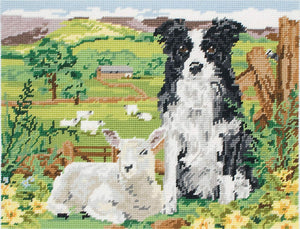 Border Collie and Lamb Tapestry Kit, Needlepoint Anchor MR7004