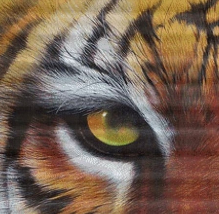 Eye of the Tiger Counted Cross Stitch Kit - David Finney
