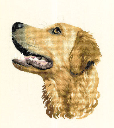 Golden Retriever Cross Stitch Kit, Gofa, Animal Portraits Heritage Crafts
