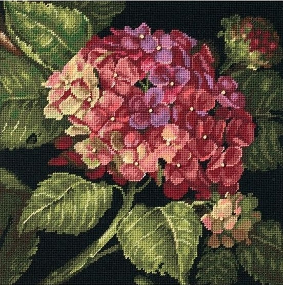 Hydrangea Bloom Tapestry Needlepoint Kit, Dimensions D20053
