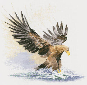 Eagle in Flight Counted Cross Stitch Kit, John Clayton, Heritage Crafts